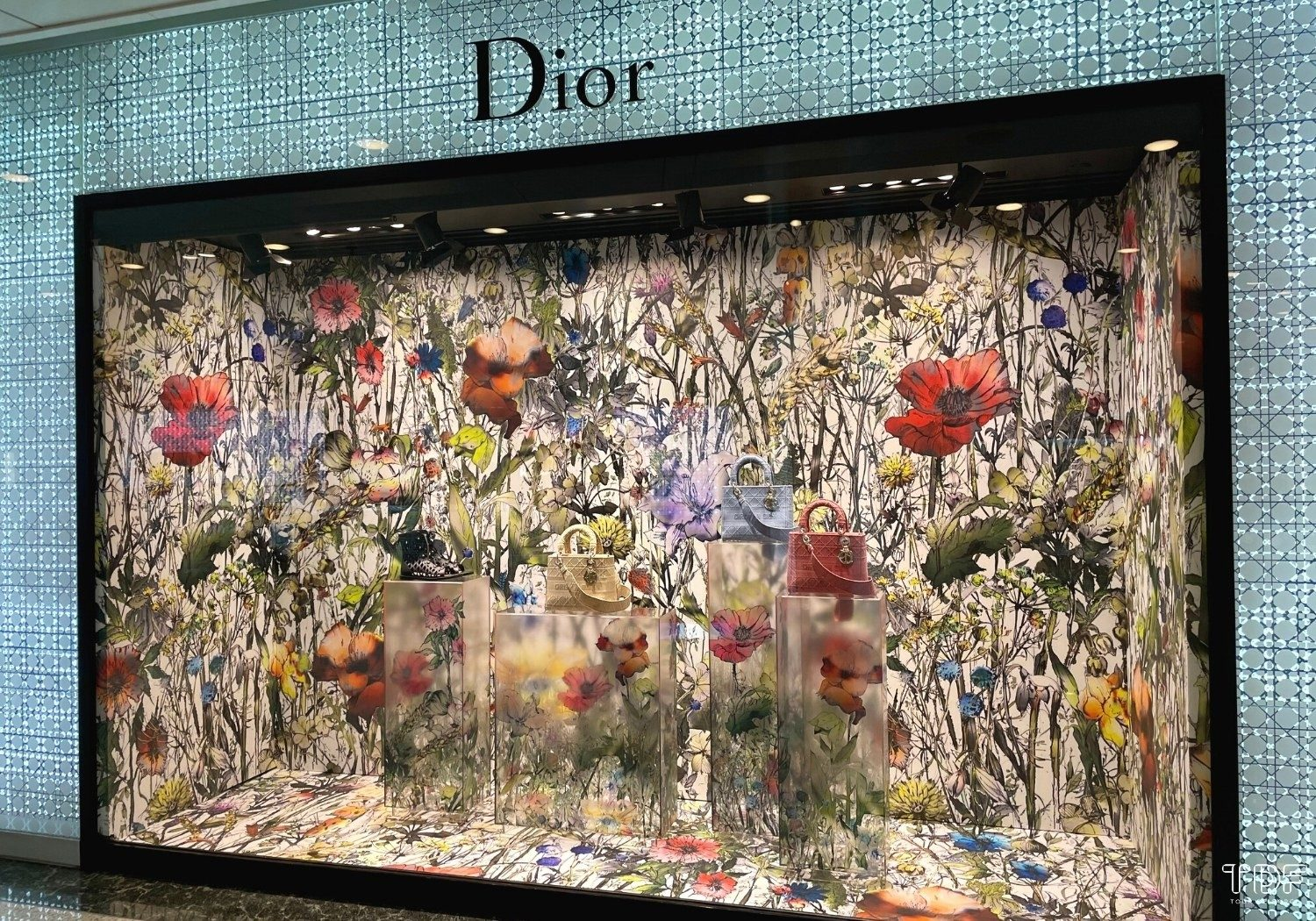Store window, window display, Dior SS21 Ready-to-Wear collection, Visual merchandising